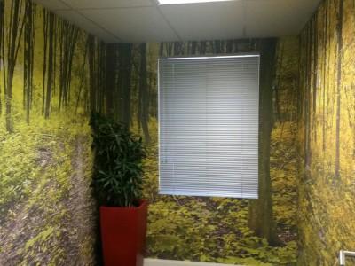 digital wallpaper custom forest