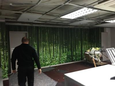 Bamboo print wallpaper mural