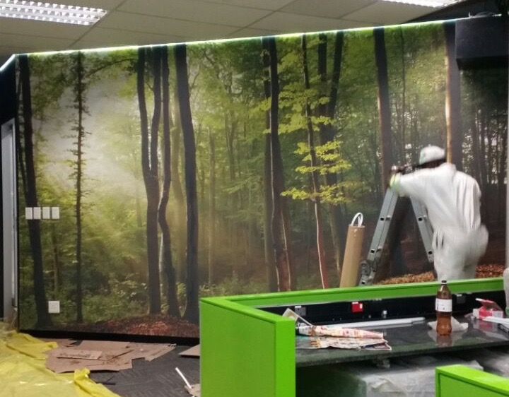 printed forest wallpaper murals